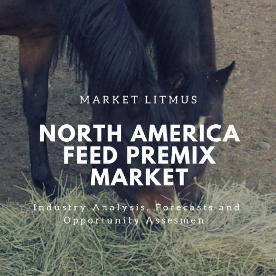 North America Feed Premix Market Sizes and Trends