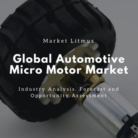 Global Automotive Micro Motor Market Sizes and Trends