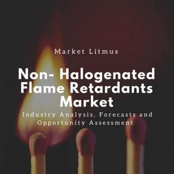 Non-Halogenated Flames Retardants Market Sizes and Trends