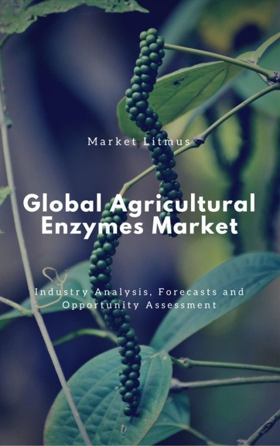 Global Agricultural enzymes market Sizes and Trends