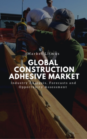 Global Construction Adhesive Market Sizes and Trends