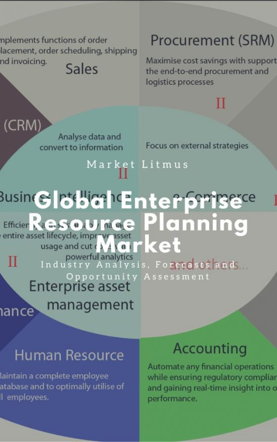 Global Enterprise Resource Planning Market Sizes and Trends
