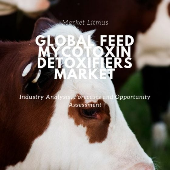 Global Feed Mycotoxin Detoxifiers Sizes and Trends