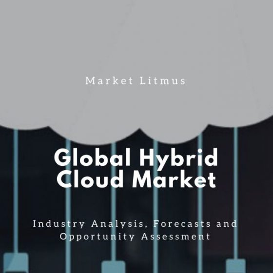 Global Hybrid Cloud Market Sizes and Trends