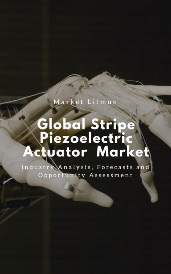 Global Stripe Piezoelectric Actuator Market Sizes and Trends